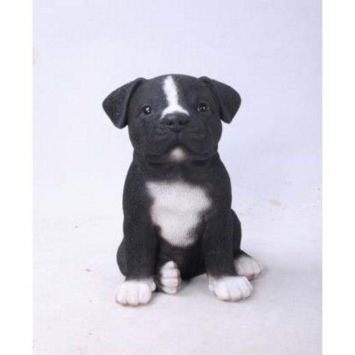 Discontinued Black Staffordshire Puppy Pet Pal Vivid Arts Bridgend Garden Centre Staffordshire Bull Terrier Puppies Staffy Dog Puppies
