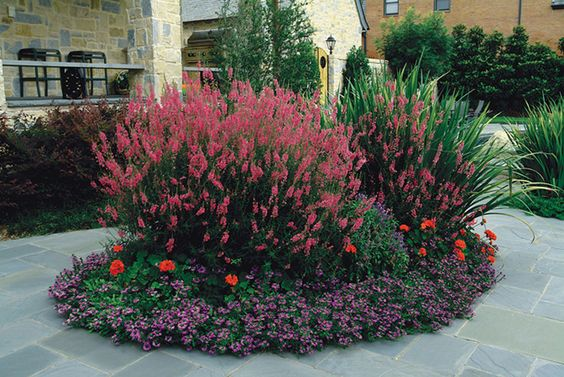 Gardens, Cottages and Landscaping on Pinterest