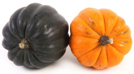 Health Benefits of Acorn Squash | Organic Facts- Some of the health benefits of acorn squash include its ability to boost the immune system, prevent certain types of cancer, improve vision, protect the skin, strengthen the bones, reduce blood pressure, maintain fluid balance, regulate blood sugar and cholesterol, improve digestion, and maintain proper circulation.