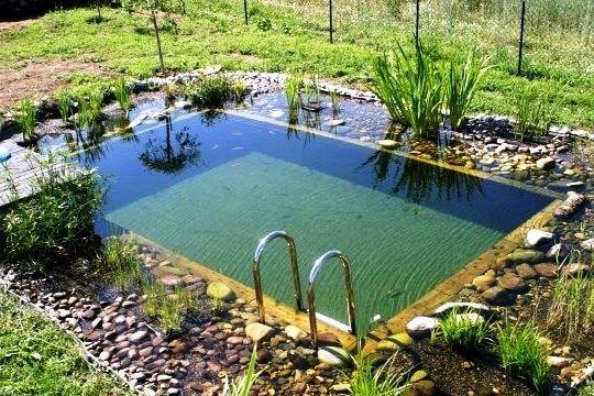 Wunderschon Naturliche Teich Swimmingpool Design Ideen Poolideen Schwimmbad Ideen Homedecor Schwimmbad Landschaftsbau Naturschwimmbecken Naturschwimmbader