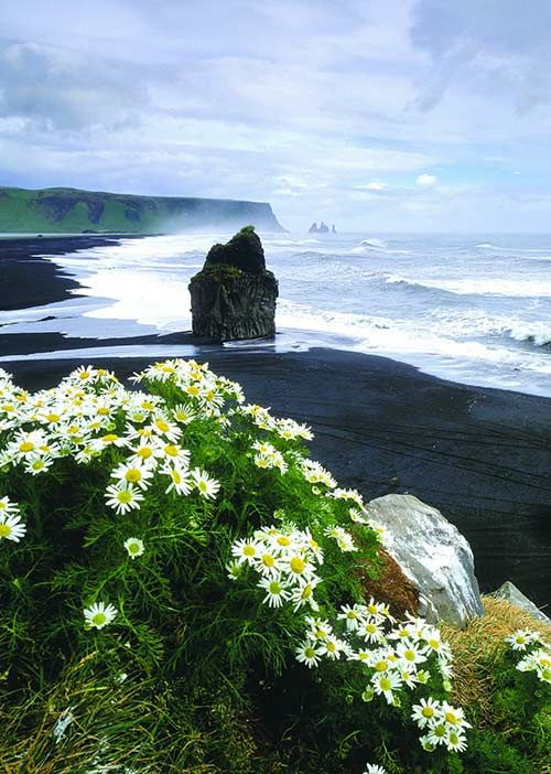 See Iceland's Game of Thrones locations: South shore Iceland