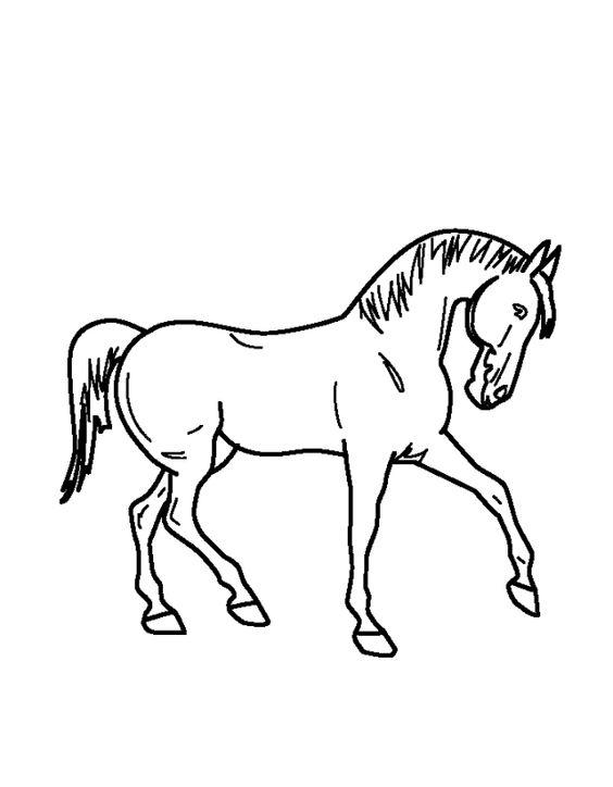 paard kleurplaat knutselpagina