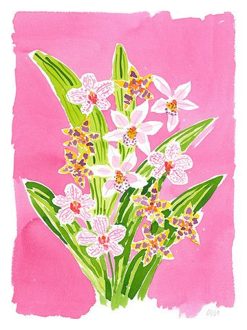 Orchid Pink - Caitlin McGauley - Tiger Flower Studio