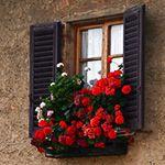 window box.  Photo by James Lawson Photography.