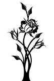 Silhueta Preta Do Ramo Com Flores Fotos De Stock – 5 Silhueta Preta Do Ramo Com Flores Imagens De Stock, Fotografia & Imagens De Stock - Dreamstime