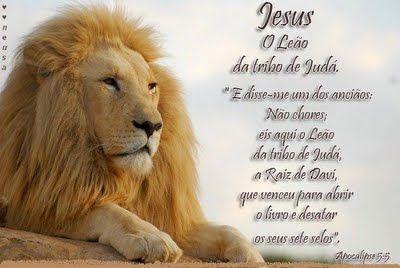 Tenho tido que viver como o Rei Leão, seguindo todos os dias com a benção de meus pais, e tendo que enfrentar os mais próximos invejosos e maldosos que me cercam.
