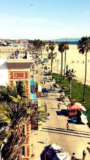 """We saw where you were staying,"" my mother said. ""It seems like a nice neighborhood.""  Venice Beach was paradise on earth, the precise shape and color of my soul, but there was no way to explain it to them. (Sinner)"