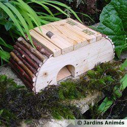 La maison des grenouilles