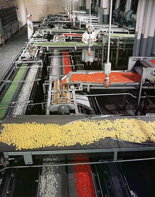 fuckyeahvintage-retro:    Life Savers factory, 1956 © Ezra Stoller