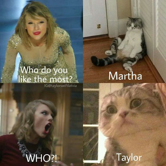 Taylor Swift and her cat Meredith conversations😍 credit goes to instagram account taylorswiftlatvia