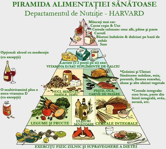 diete echilibrate si sanatoase)