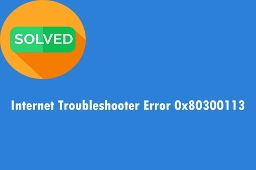 3 Methods To Fix The Internet Troubleshooter Error 0x80300113