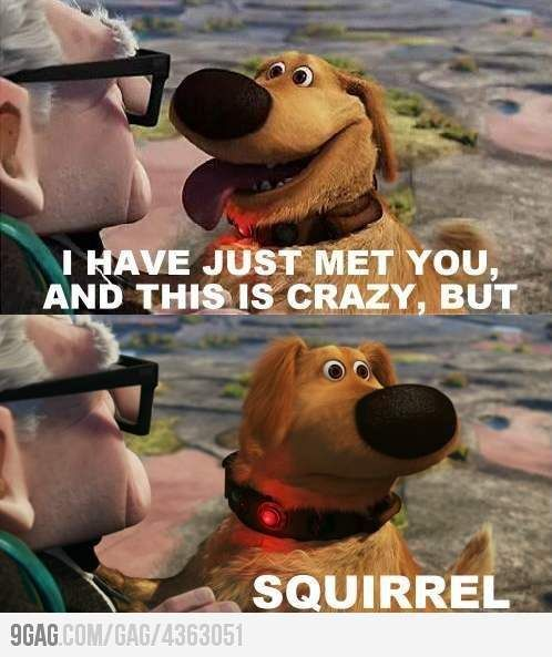 Call Me Maybe... Then all of a sudden... he says squirrel... the movie's not complete without it:)