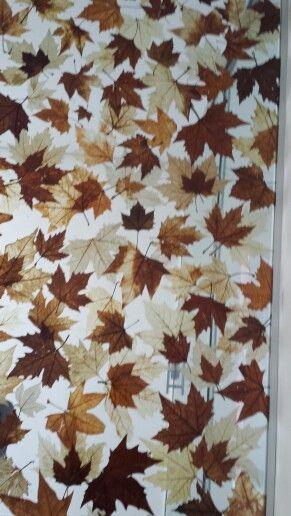parede divisoria de vidro com folhas naturais feito po Fumiko