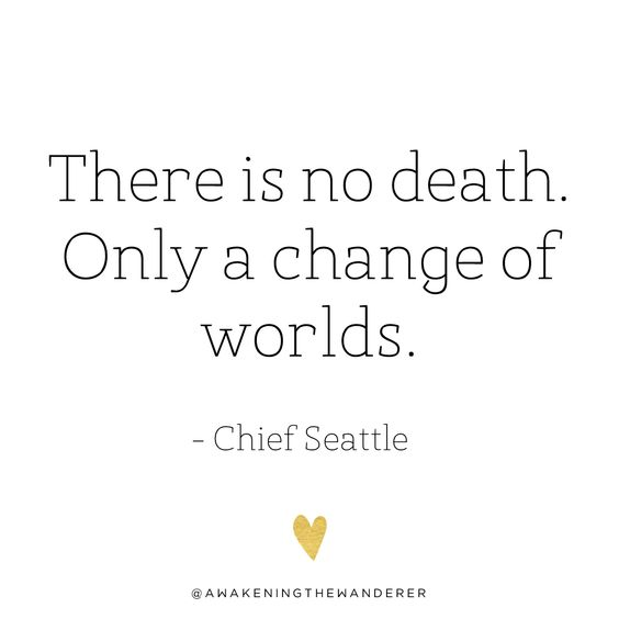 #chiefseattle #nativewisdom #nativequote #deathquote #reincarnation