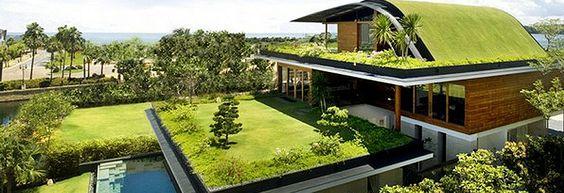 casa ecologica china - Pesquisa Google