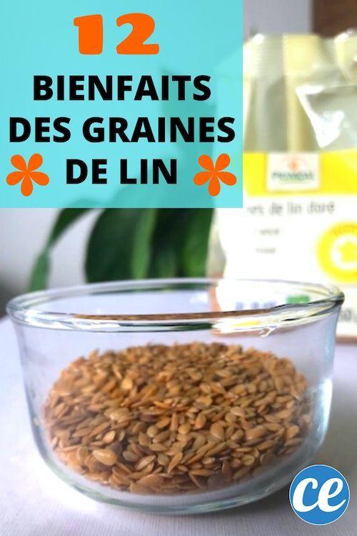 Comment Moudre Les Graines De Lin : comment, moudre, graines, Bienfaits, GRAINES, Santé, Personne, Connaît., Graines, Graine, Aliments, Alcalinisants