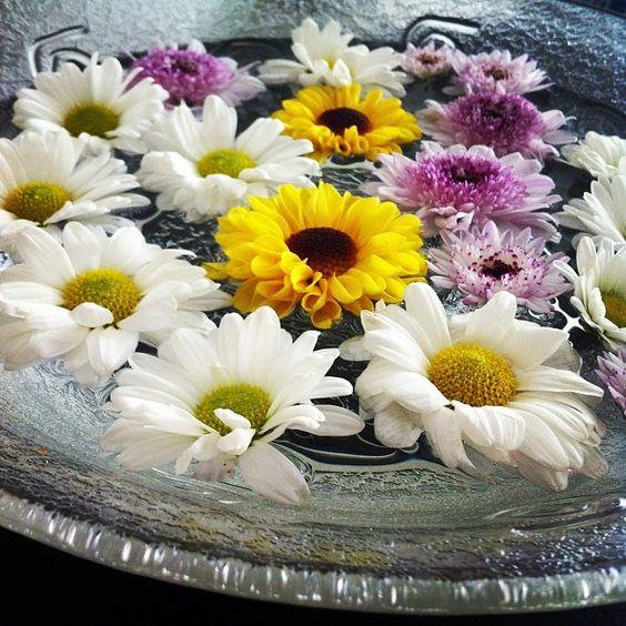 Flores sobre a água com velasas velas já se foram, mas as flores ficaram