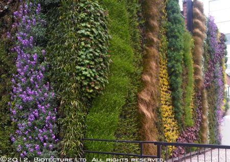 Vertical Garden Systems   Sage Vertical Gardens