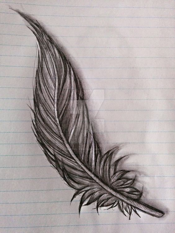 feather sketch by Primeval-Wings