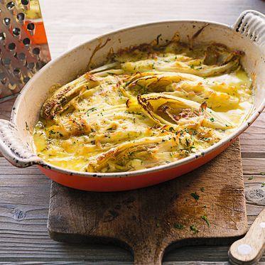 Gratinierter Chicorée Rezept   Küchengötter