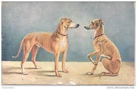 ilustracion cientifico 1900 - Buscar con Google