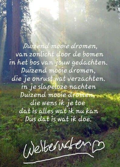 Citaten Over Slapen : Welterusten en slaap lekker i love nederlandse quotes