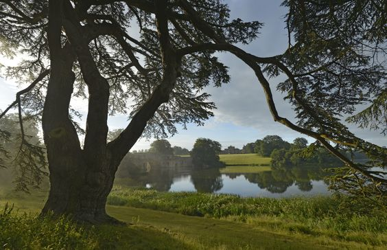 Lakeside at Blenheim Palace:
