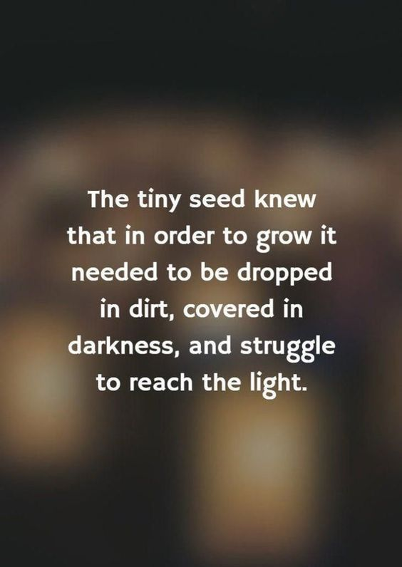 200 Quotes About Life Struggles And Overcoming Adversity In Life Tough Times Quotes Difficult Times Quotes Adversity Quotes