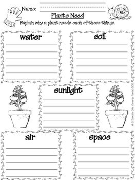 What Does Your Garden Grow? Mini Unit Plant Life Cycle | Plants ...