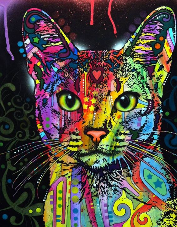 a color collage in a cat, good varitity in different patterns while till holding a clean image of the cat with a black stained background.: