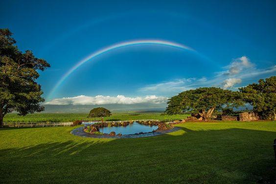 Rainbows of Hawaii