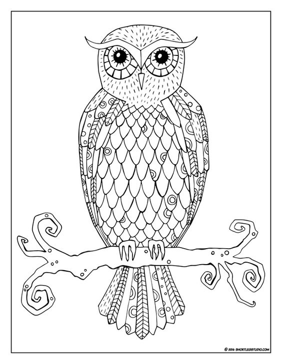 Free funky owl coloring page