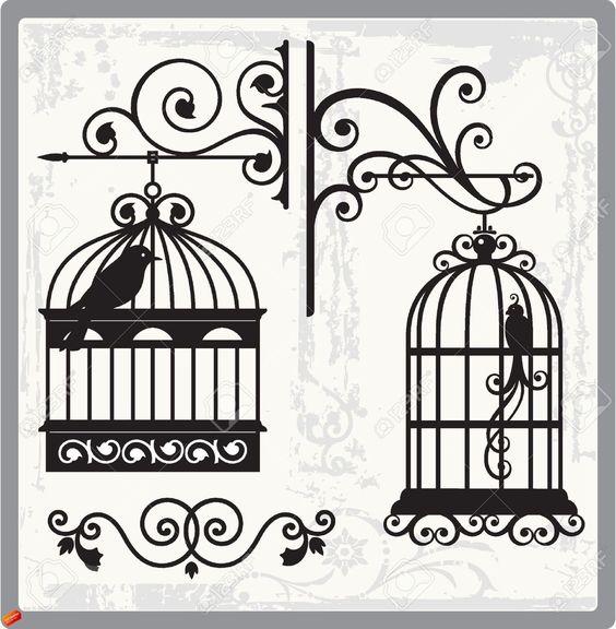 Bird cage graphics   gabbie per uccelli