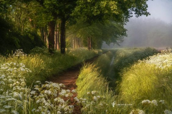 Spring in Holland by Lars van de Goor on 500px