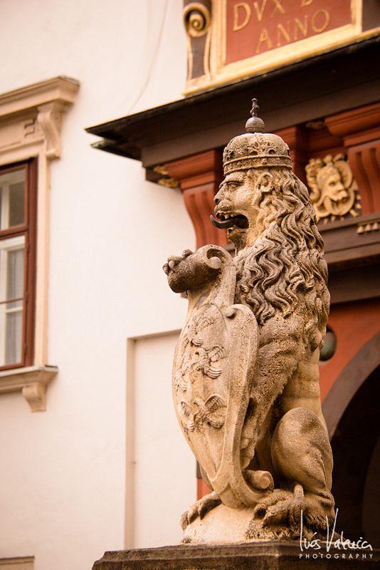 Rincones de Viena VIII
