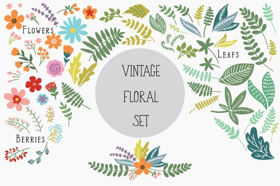 Vintage Floral Set by Maria Galybina on @creativemarket