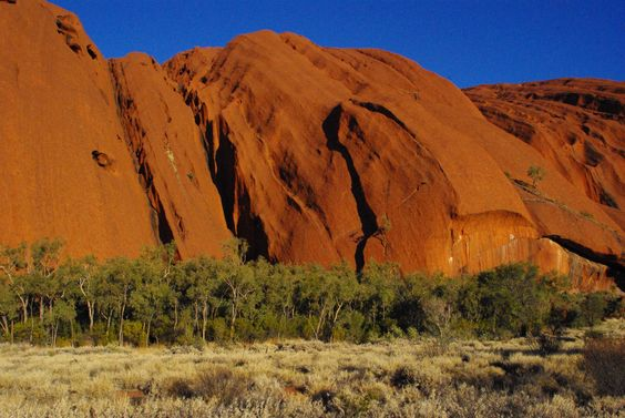 Outback colours of silver, green, red and the bluest blue. Uluru NT Aus