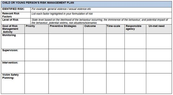 templates of risk management action plan - Google Search - free risk assessment template