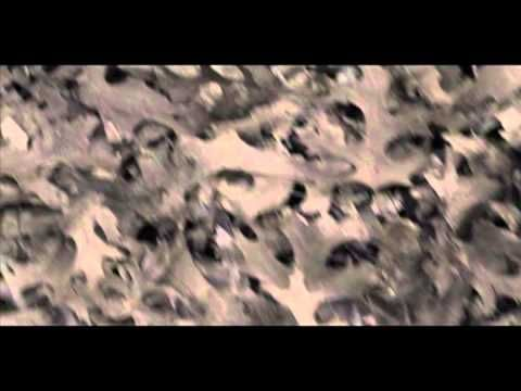 Shearwater - You As You Were [OFFICIAL VIDEO] - YouTube