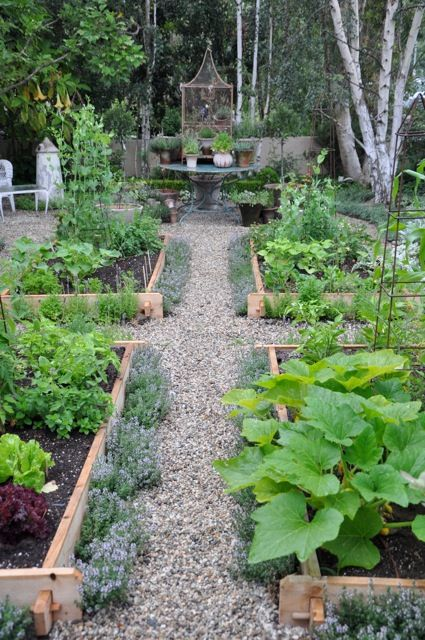 Like this set up: 3/4 Beds, Edible Garden, Gravel Path, Kitchen Garden, Raised Garden, Vegetable Garden