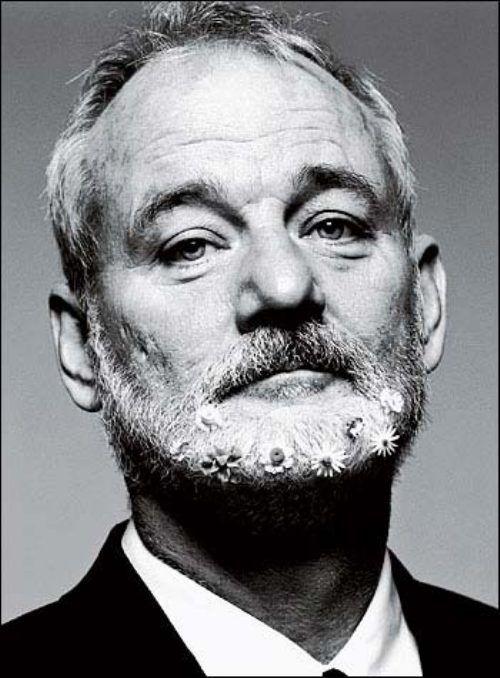 Bill, of the daisy beard.