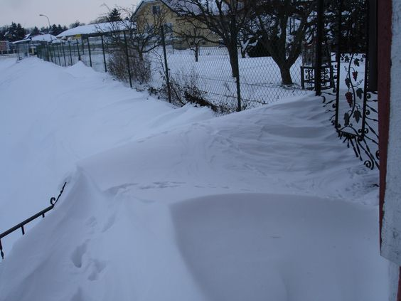 schnee im garten, jänner 2013