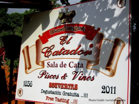 El Catador is one of the most well-known bodegas to visit to taste pisco in Peru.