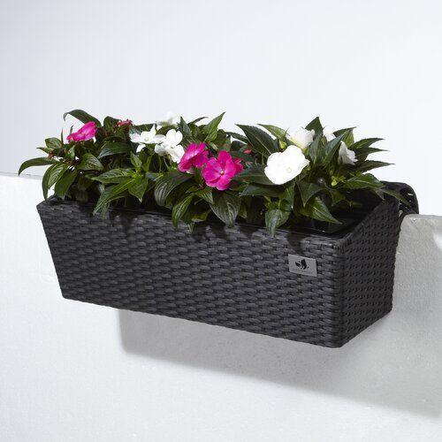 Balcony Raised Flower Bed Home Etc Colour Anthracite Size 25cm H X 62cm W X 22cm D In 2020 Raised Flower Beds Planter Box With Trellis Plastic Plant Pots