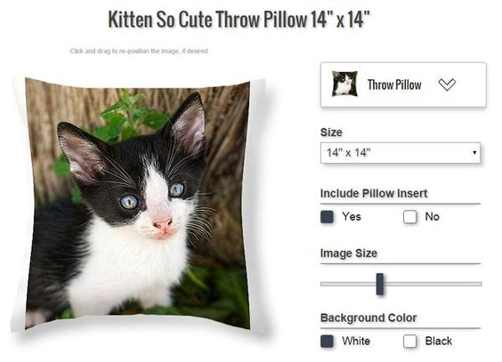 Cute kitten pillow