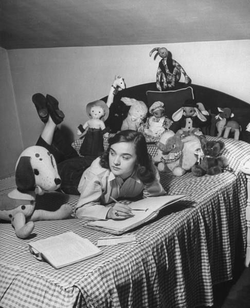 Homework on the bed to a stuffed animal audience