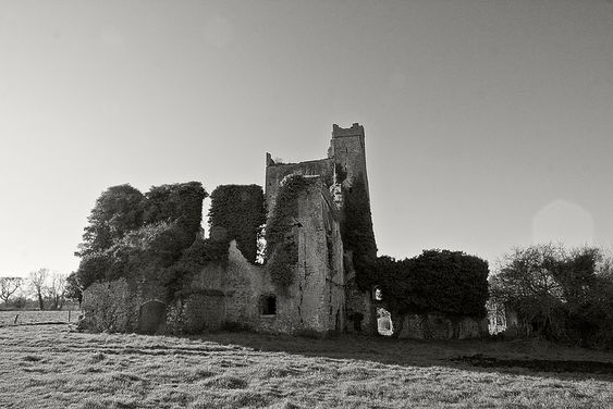Ballyadams Castle rear | by backpackphotography