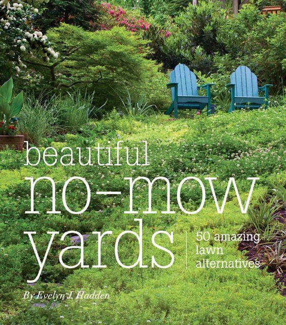 : Garden Ideas, No Mow Yard, Amazing Lawn, Lawn Alternatives, Front Yard, Mow Lawns, Mow Yards, Yard Ideas