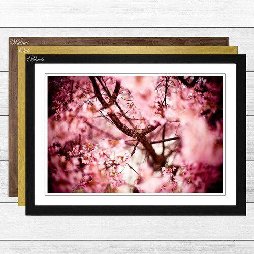 Big Box Art Pink Cherry Blossom Tree Flowers 4 Framed Photographic Print In 2021 Big Box Art Cherry Blossom Tree Blossom Trees